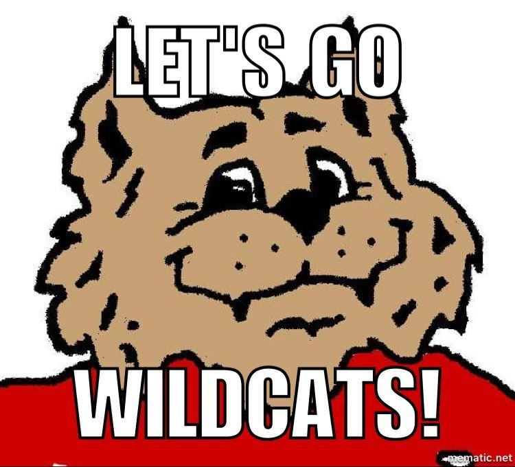 Celebrate! Wildcat Video!